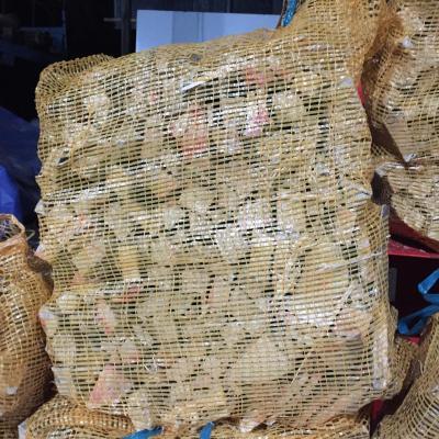Sac buchettes allumage chêne 40L